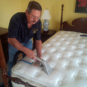 Skitterblink Upholstery Cleaning 13