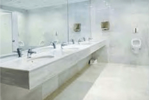 Maitland Hygiene Services Skitterblink Cleaning Services